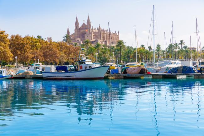 Słynna katedra na Majorce