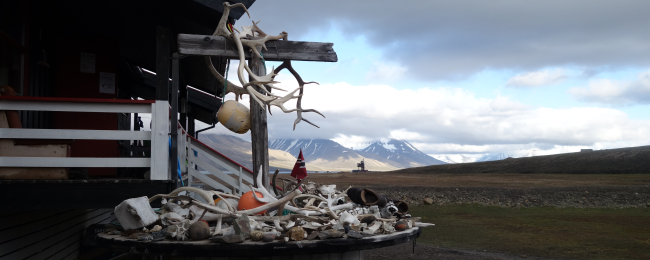 Okolice Longyearbyen