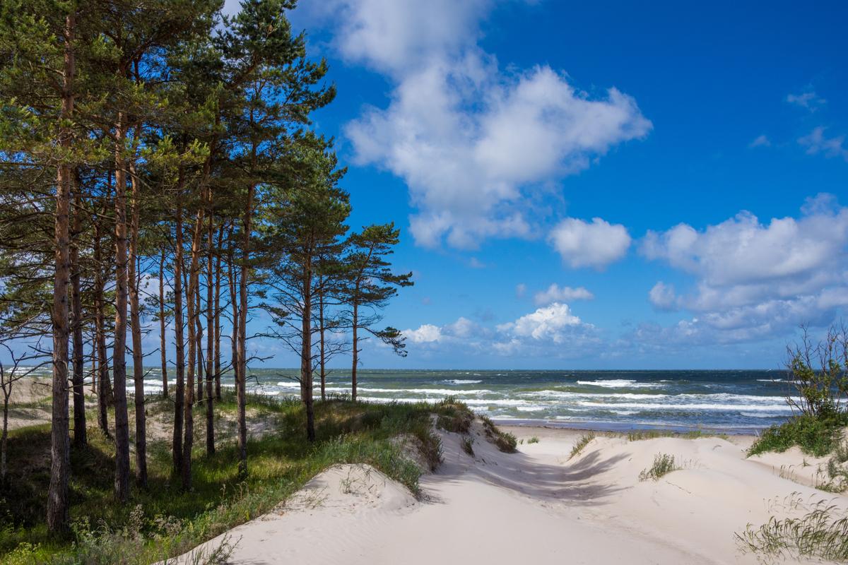 plaża nad Bałtykiem