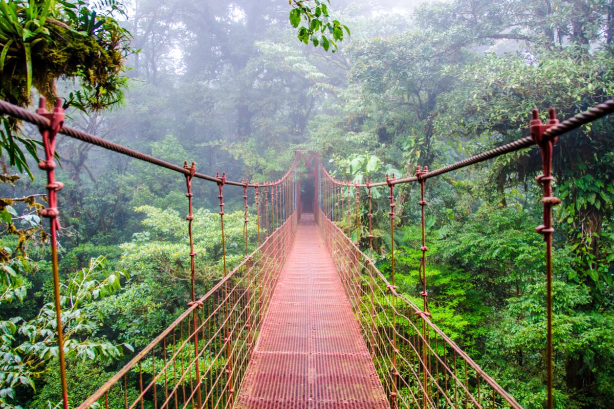 kostaryka wiszący most
