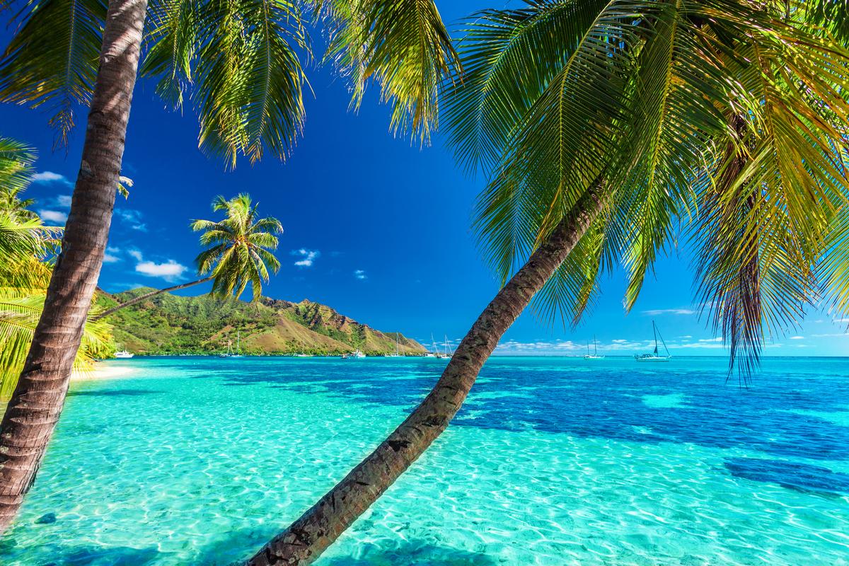 polinezja francuska wyspy