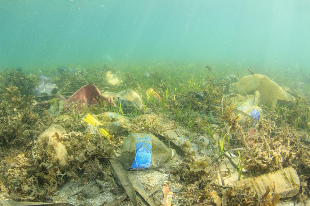 śmieci na dnie morza
