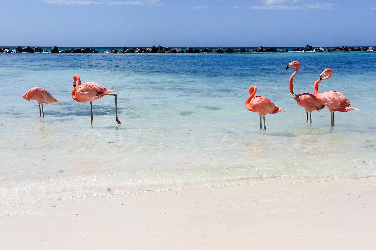 Aruba plaża