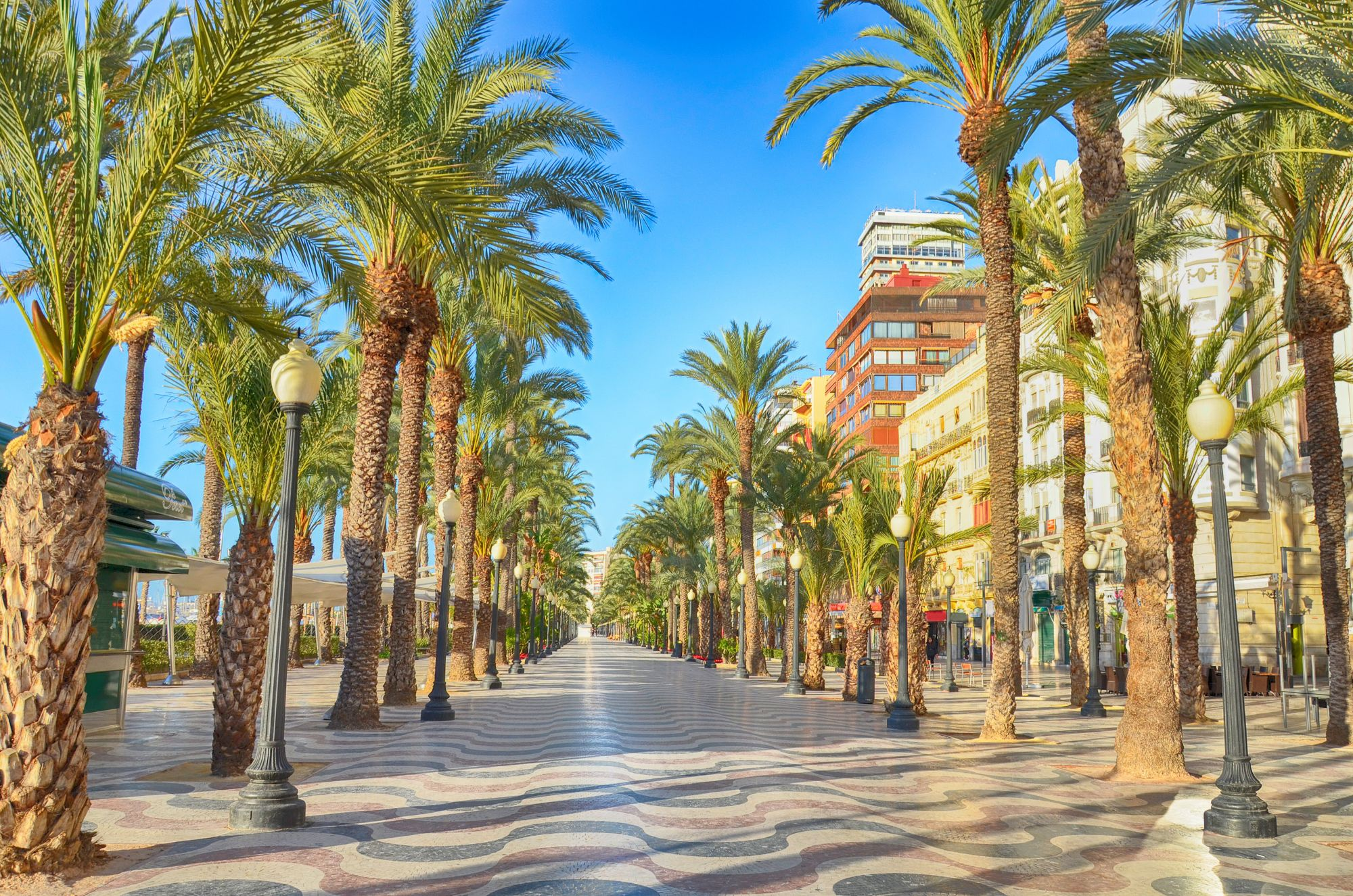 Alicante aleja w mieście