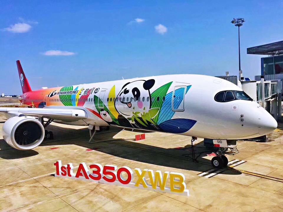 samolot panda
