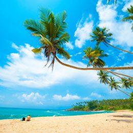 plaża na Sri Lance
