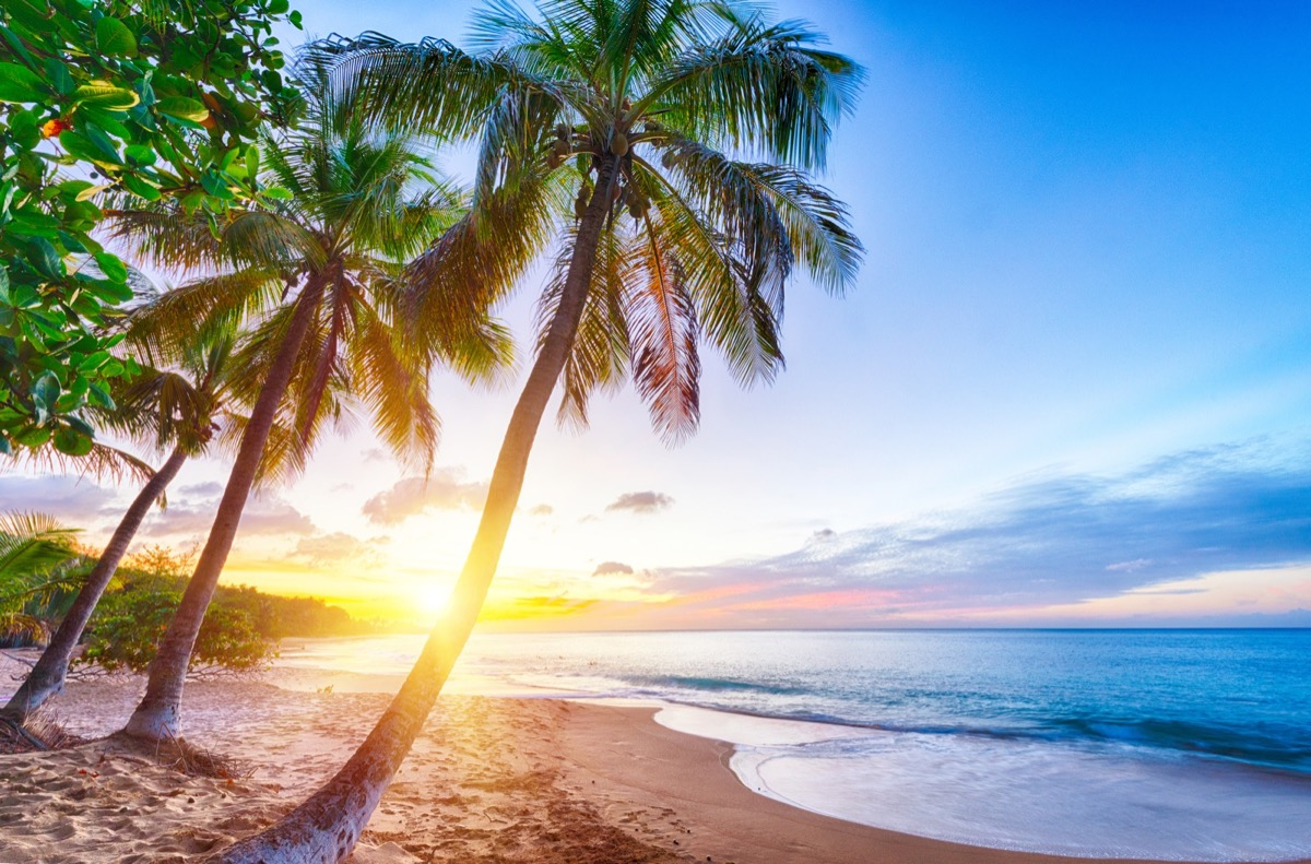 gwadelupa plaża