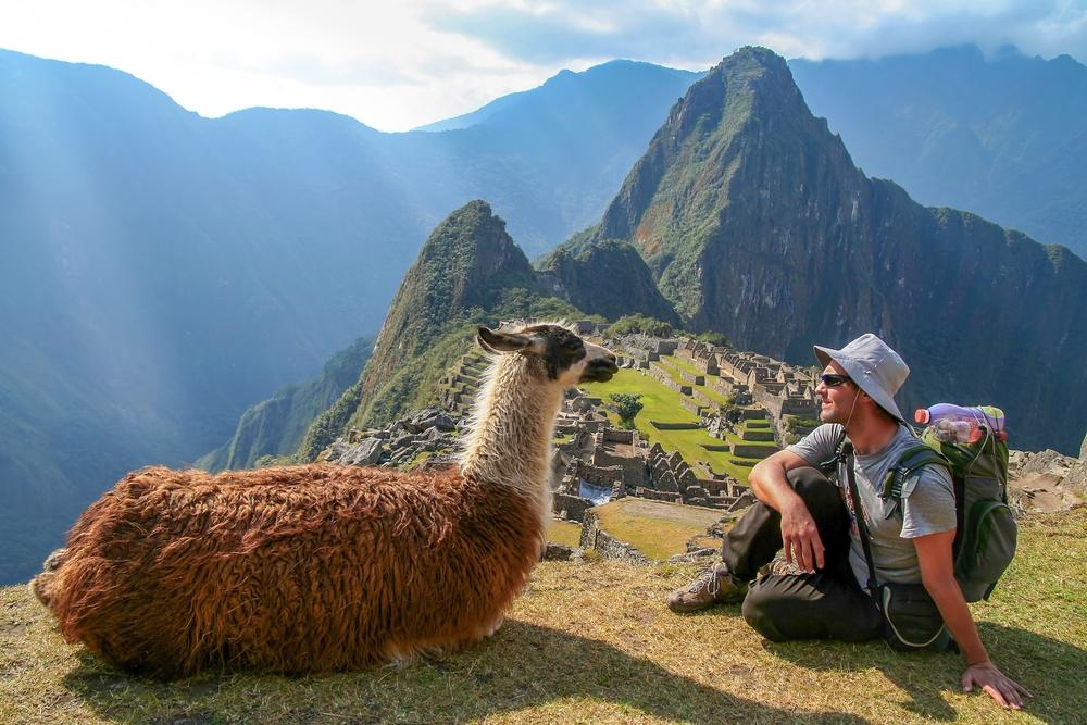 Turysta w Peru z lamą