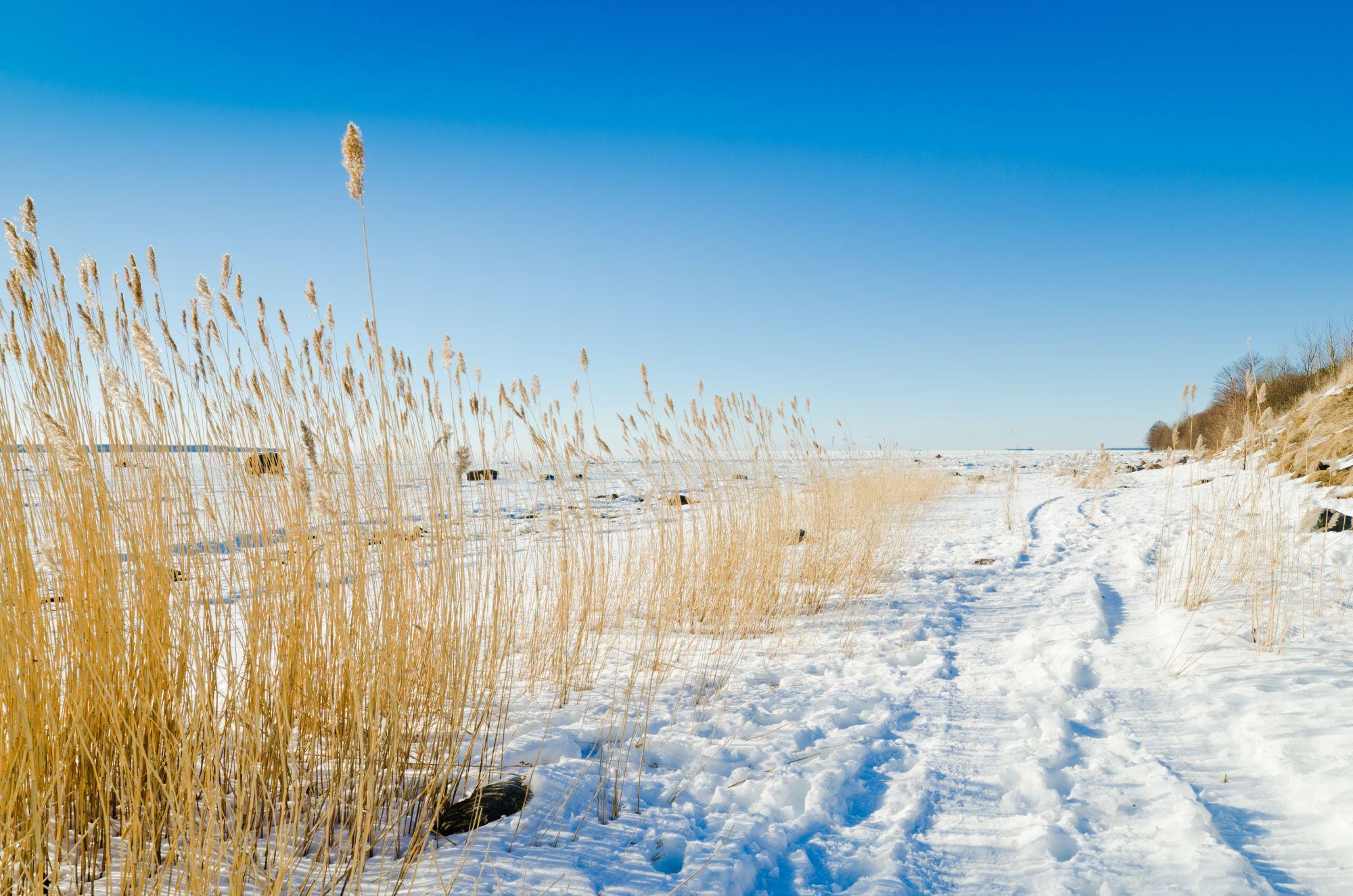 Bałtyk plaża zimą