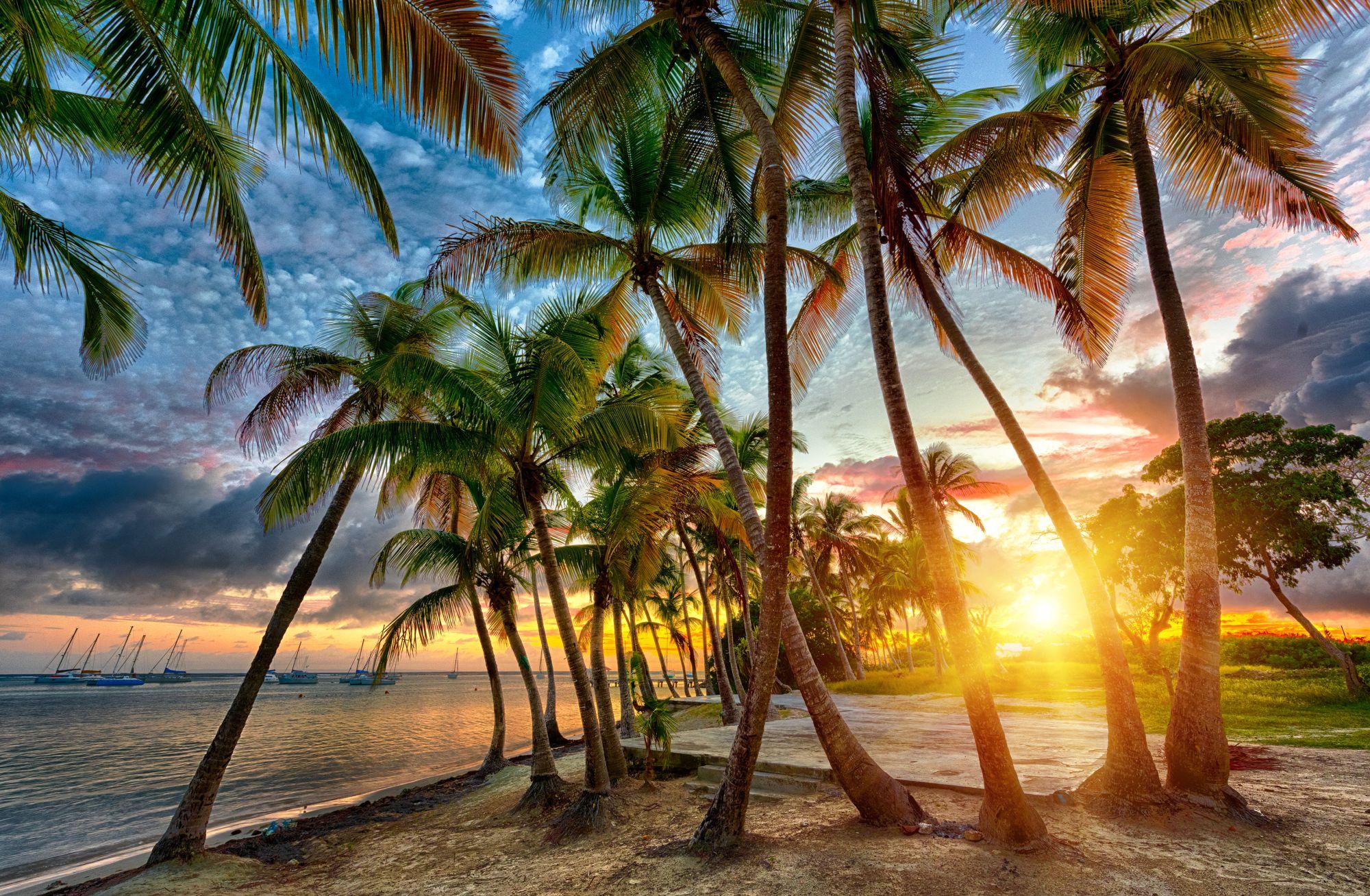 Gwadelupa widok plaży