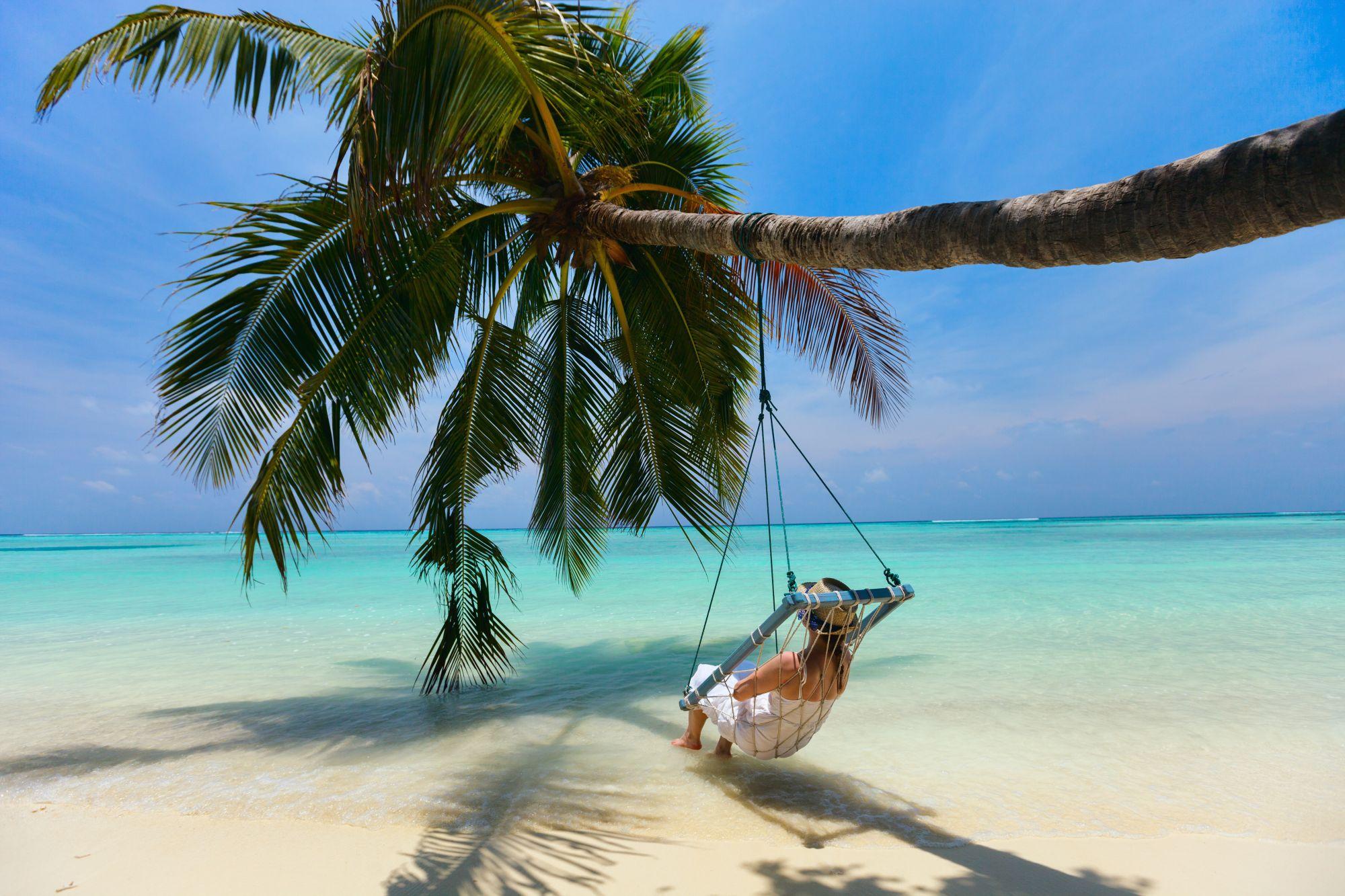 Karaiby palma i hamak