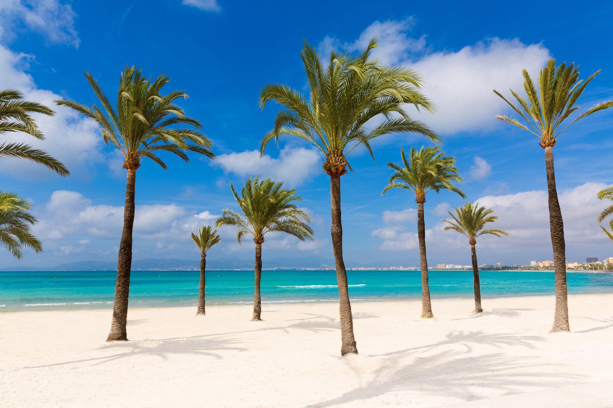 Majorka widok plaży