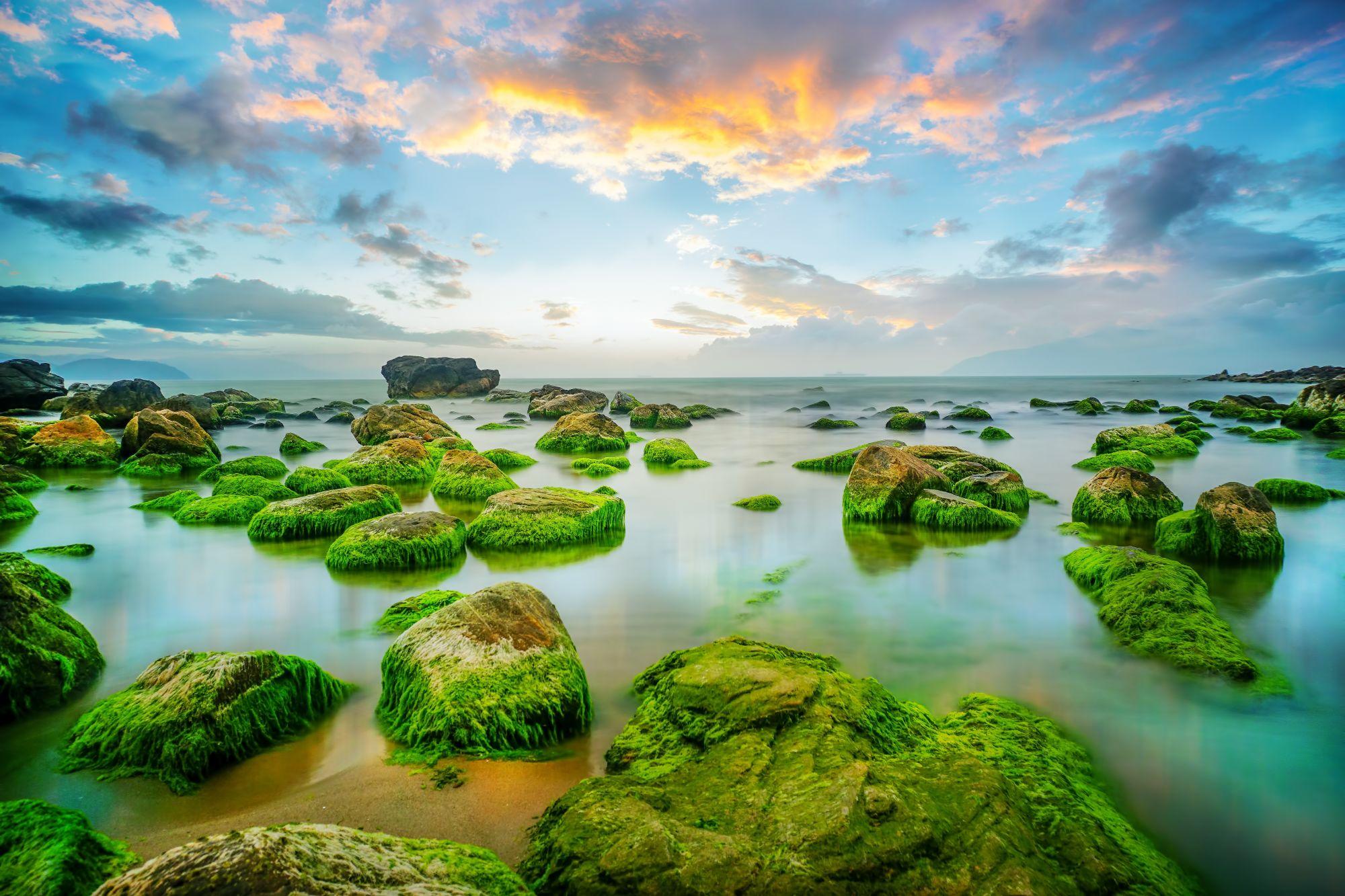 Da Nang wybrzeże o poranku