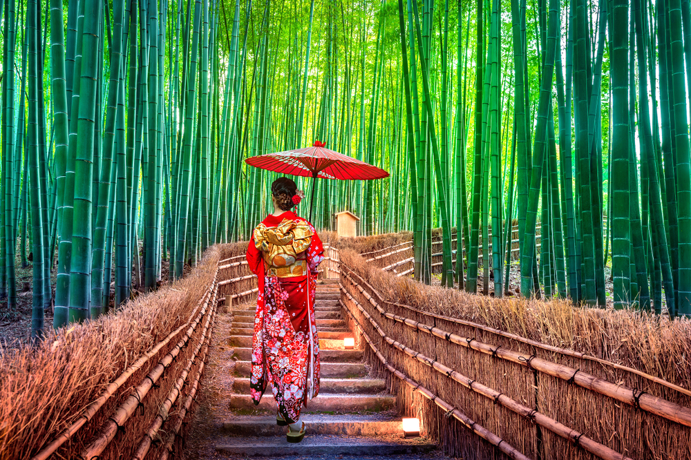Kioto las bambusowy