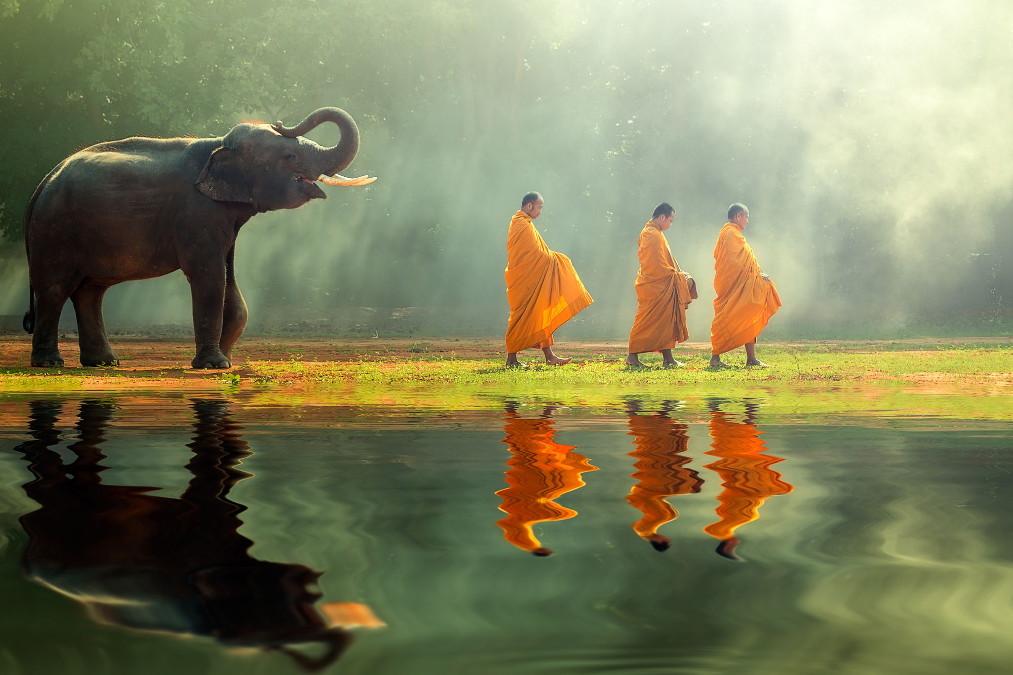 Tajlandia mnisi i słoń