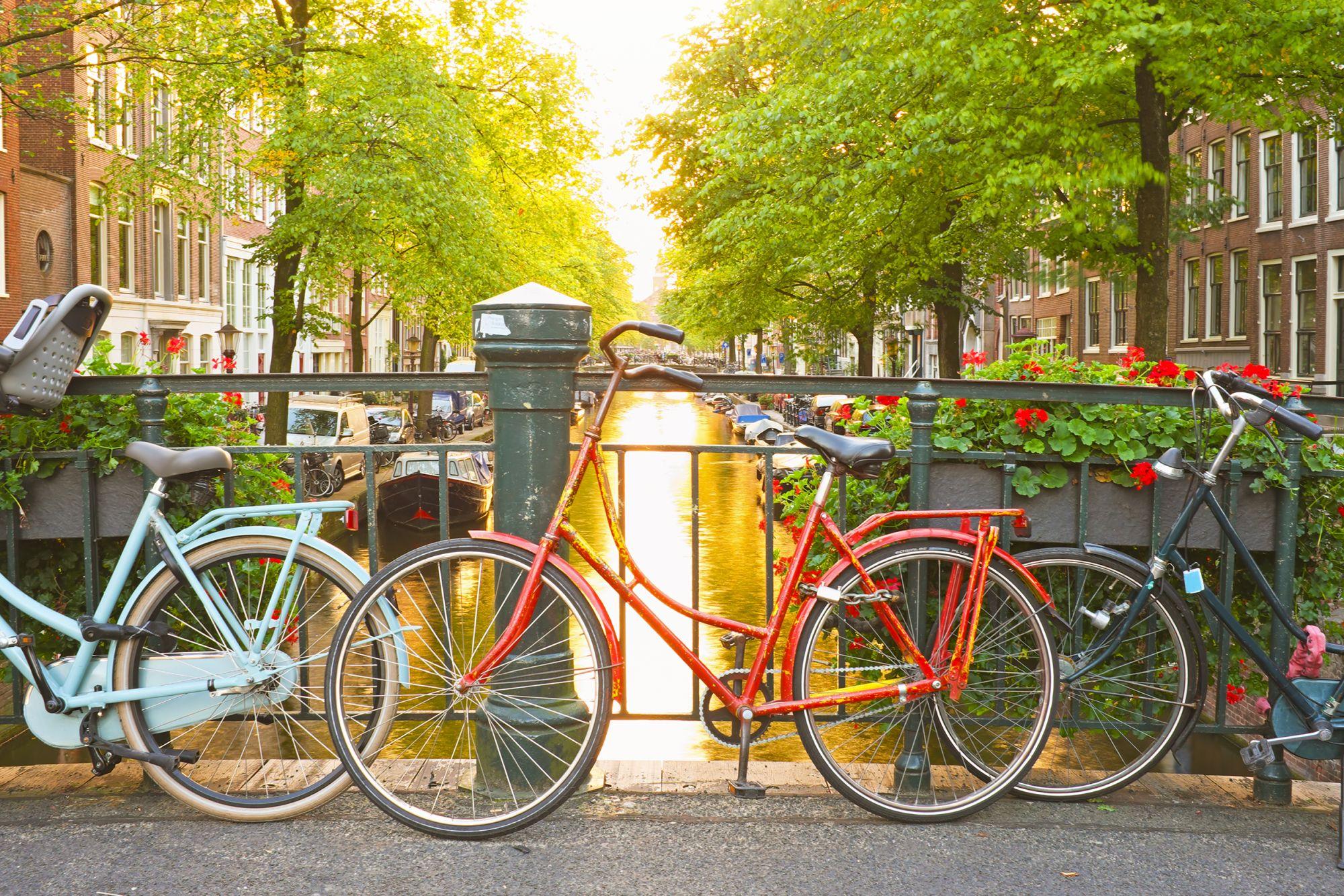 Amsterdam rowery nad kanałem