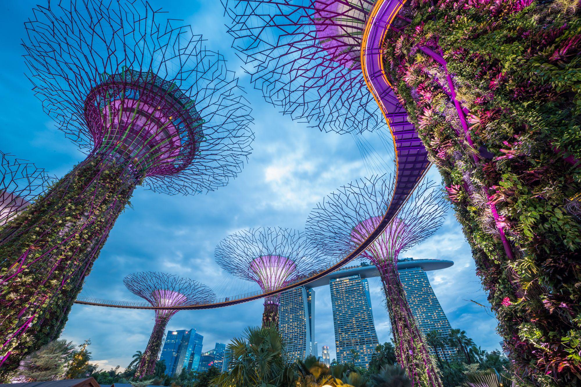Singapur ogród miejski