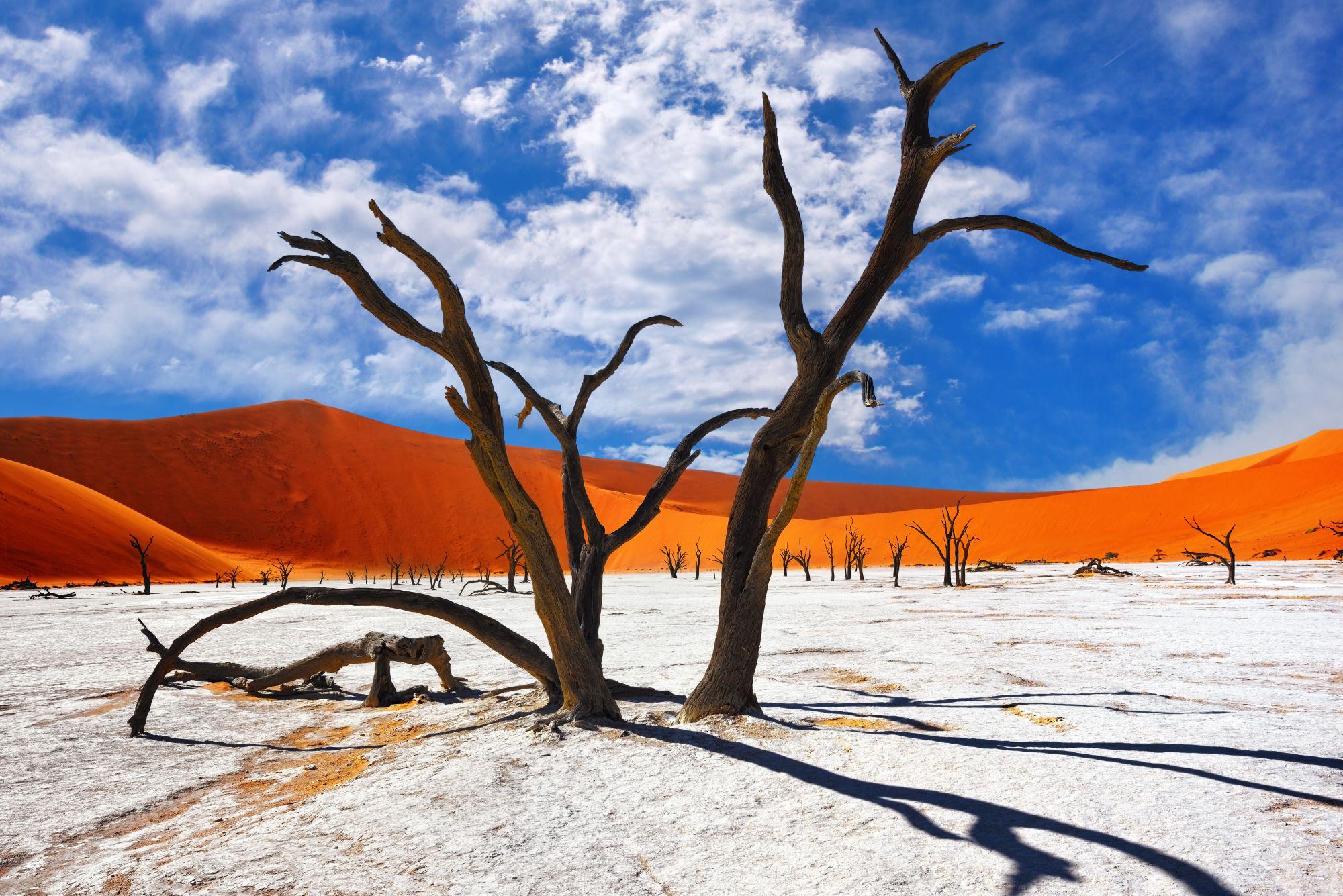 Krajobraz Namibii
