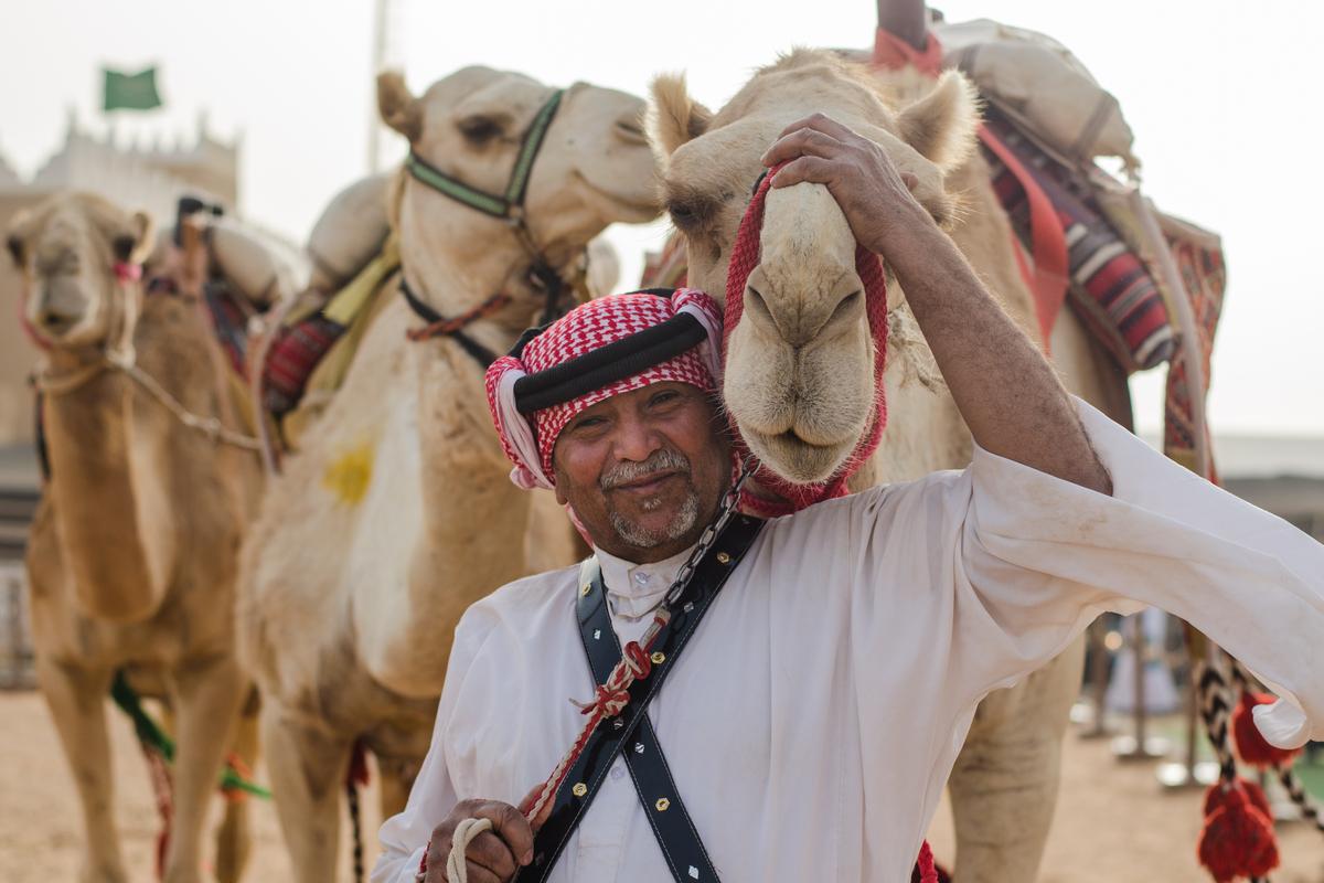 saudyjczyk i wielbłądy