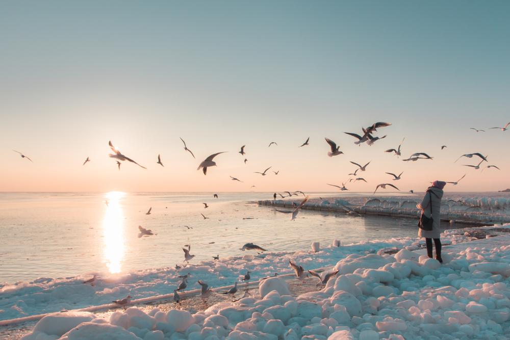 Morze w Odessie