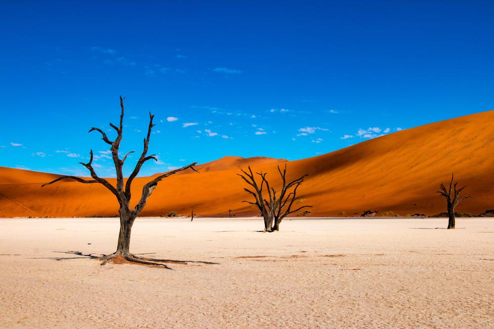 Deadvlei w namibii