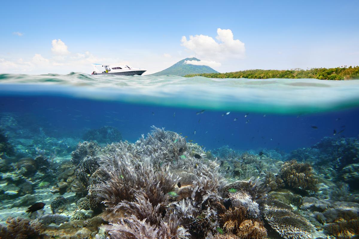 Północne Sulawesi