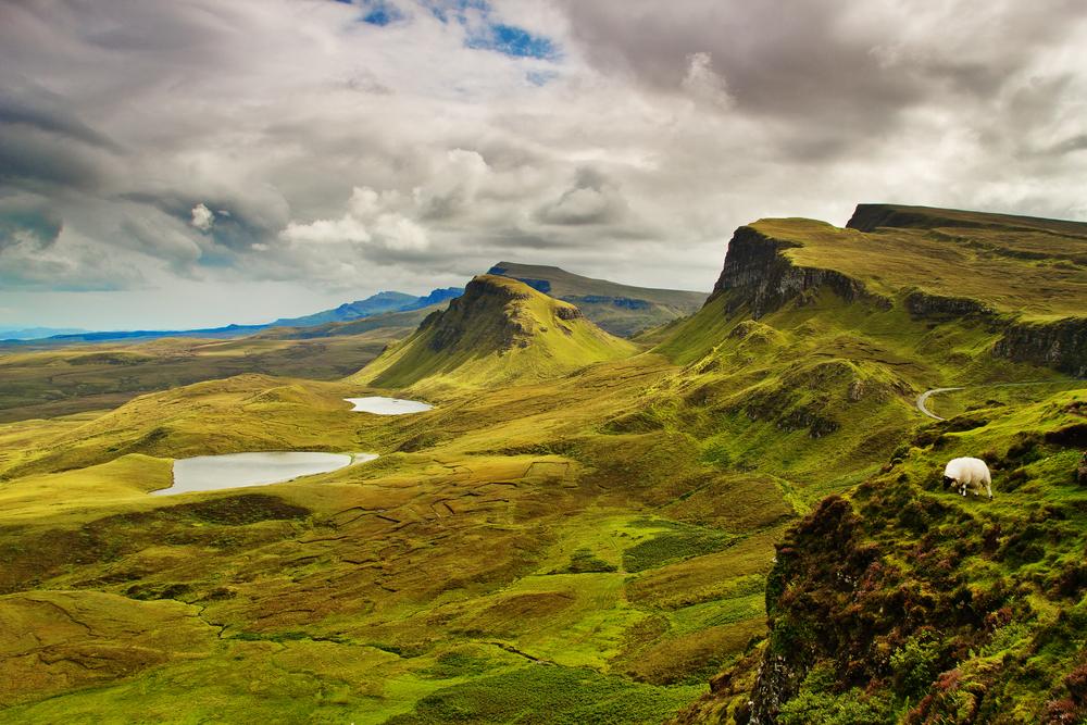 Szkockie wrzosowiska
