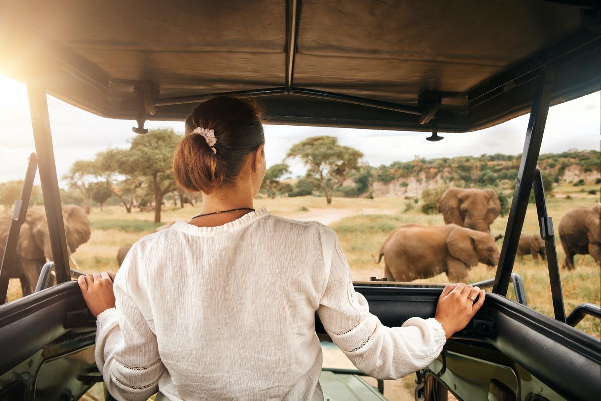 safari rpa
