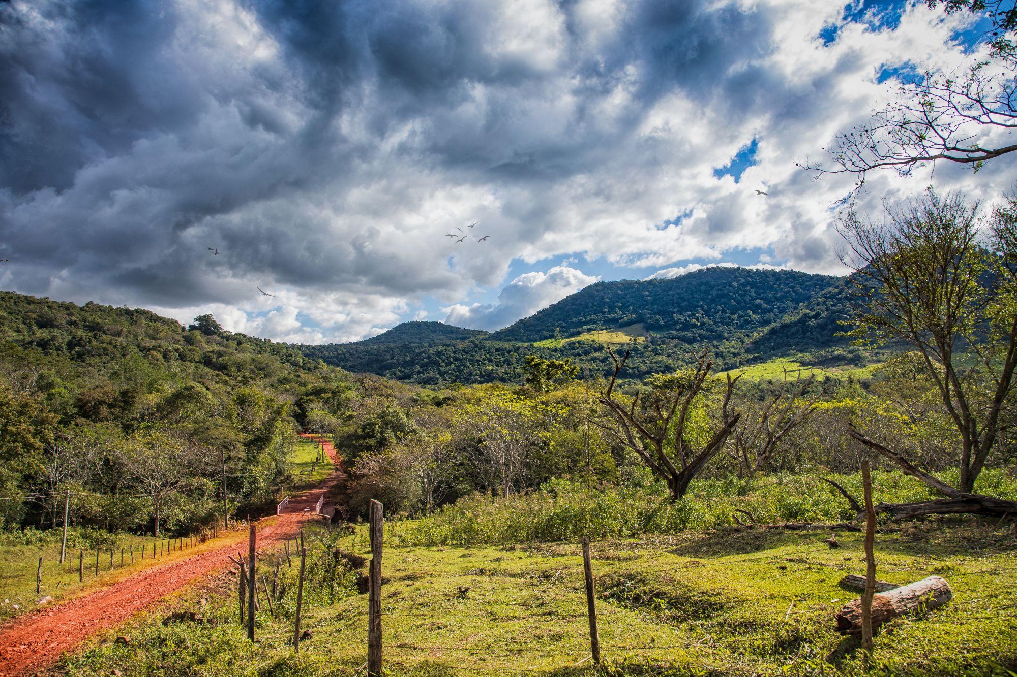 Droga w Paragwaju