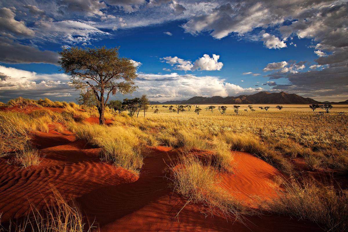 rezerwat przyrody w Namibii