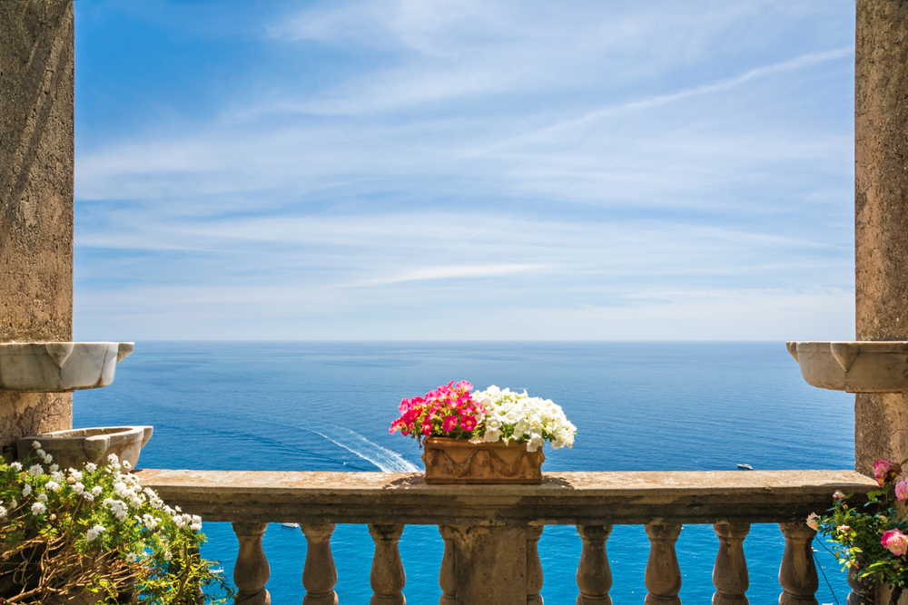 Kwiaty nad morzem