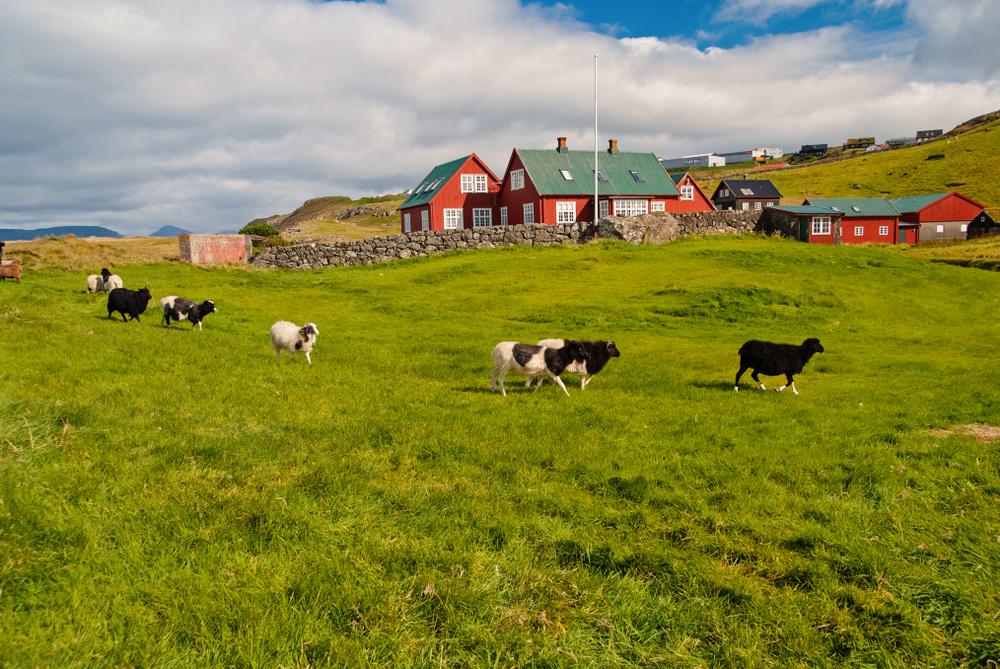Krajobraz Danii