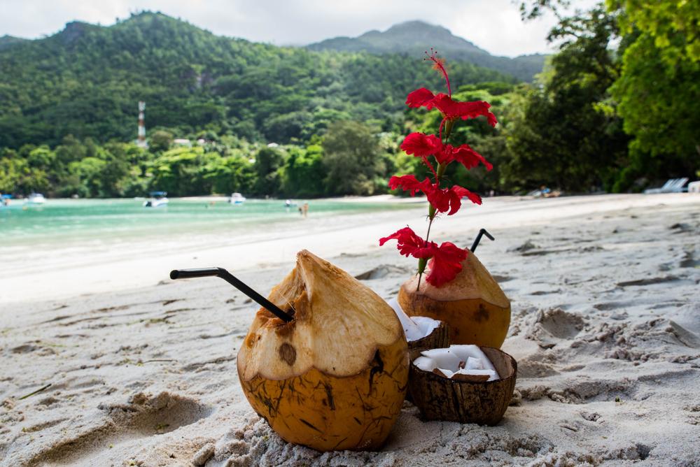 Drinki w kokosach