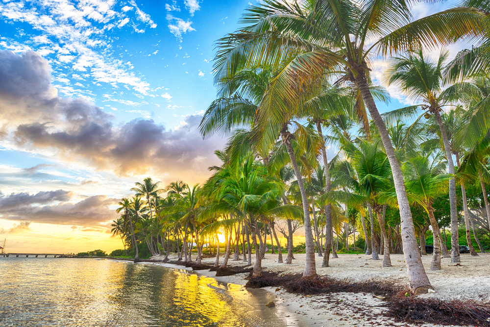 Plaża na Gwadelupie