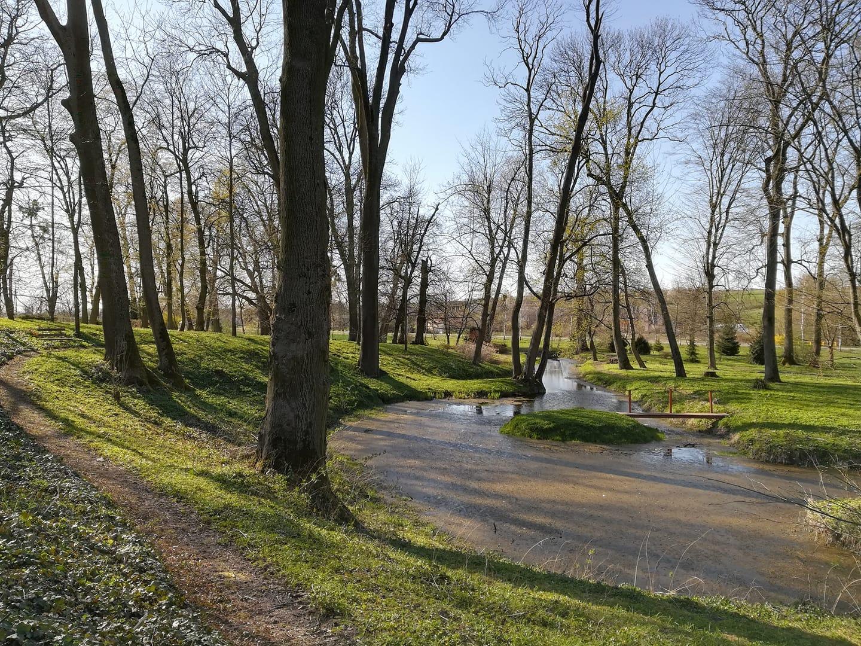 Park w Dworku