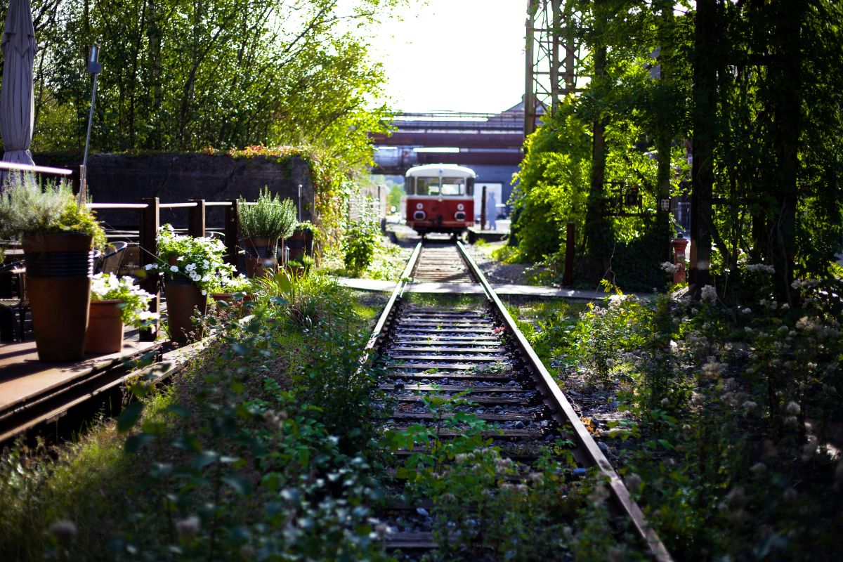 Widok pociągu