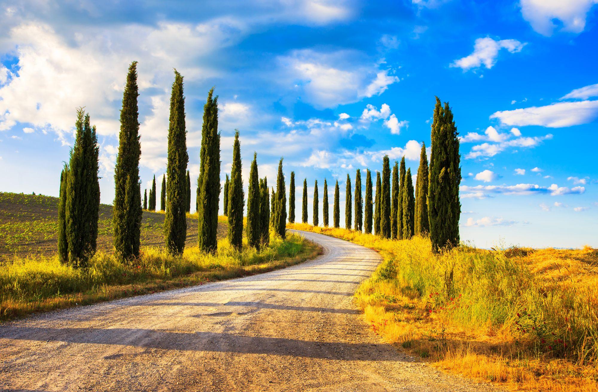 Droga w Toskanii